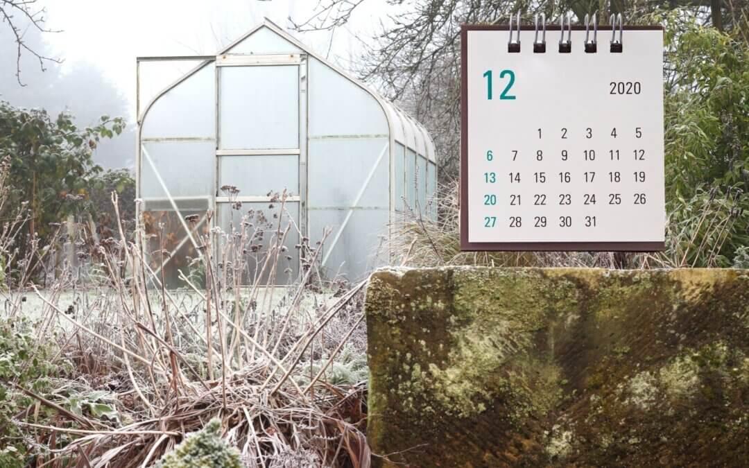 Zahradní kalendář – kouzelný prosinec