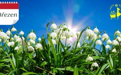 Kalendář šťastné zahradnice – nadějeplný březen