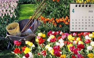 Kalendář šťastné zahradnice – zelenající se duben