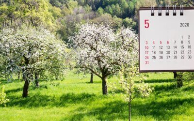 Kalendář šťastné zahradnice – rozkvetlý květen